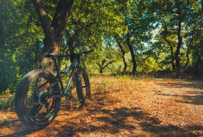 Fat Bikes – wofür sind diese Fahrräder gut?